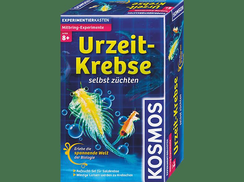 KOSMOS Urzeit-Krebse Mitbringexperiment
