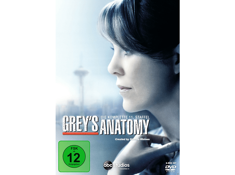 Greys Anatomy - 11. Staffel [DVD]