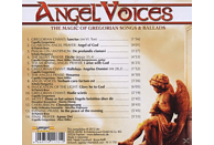 Capella Gregorian/St Patrick Boys/+ - Angel Voices-The Magic Of Gregorian Songs &Ballads [CD]