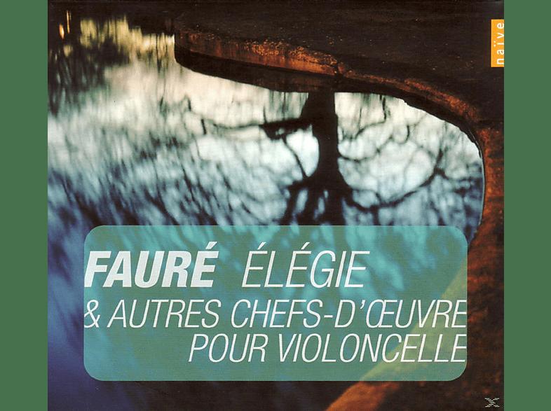 Gastinel, E. Krivine, Orchestre National De Lyon - Elegie & Autres Chefs-D'oeuvre Pour Violoncelle [CD]