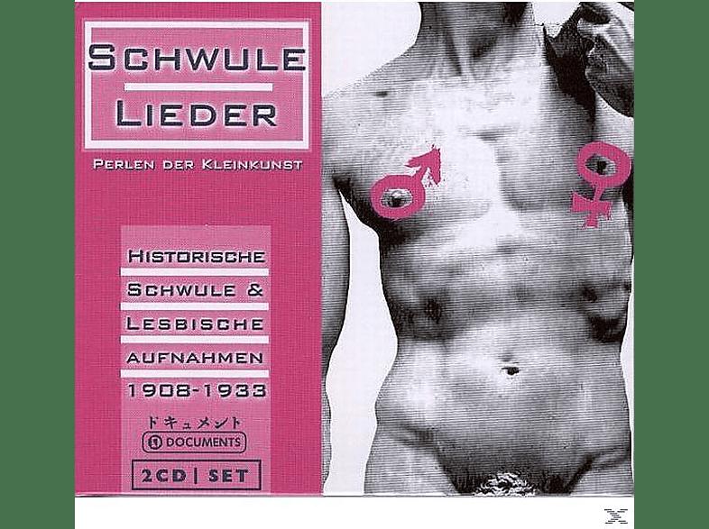 VARIOUS - Schwule Lieder [CD]