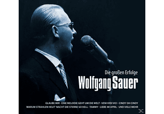 Wolfgang Sauer - Die großen Erfolge  - (CD)