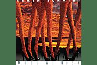 Irmin Schmidt - Musk At Dusk [CD]