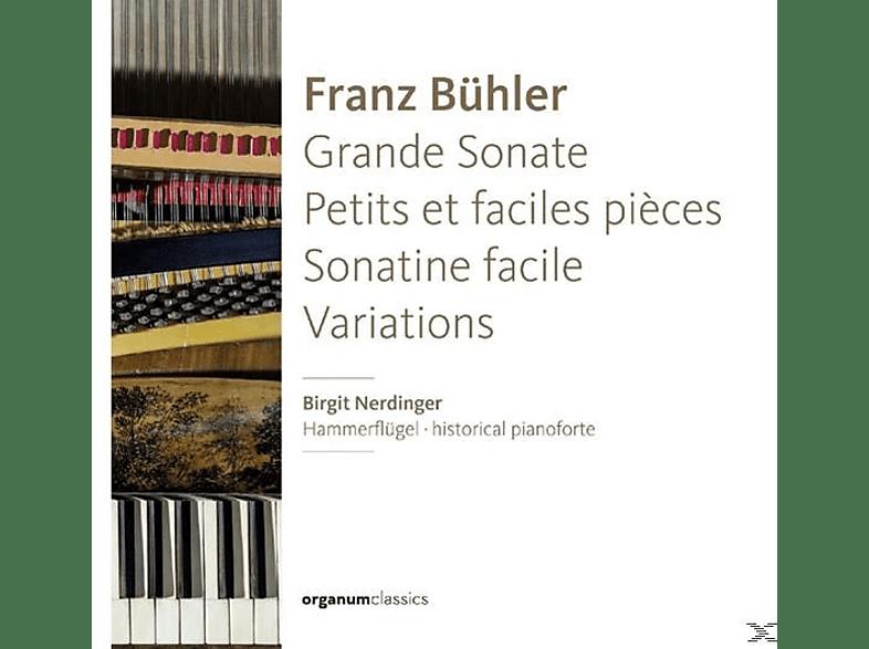 Birgit Nerdinger - Grande Sonate/Petits Et Faciles Pieces [CD]