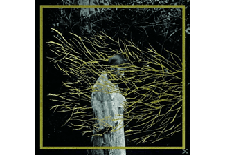 Forest Swords - Emgravings  - (CD)