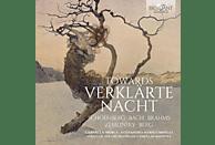 Orchestra Da Camera Di Mantova - Towards Verklärte Nacht [CD]