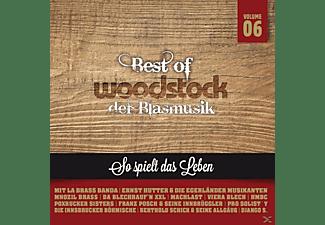 Best Woodstock Der Blasmusik - Best Woodstock der Blasmusik V  - (CD)