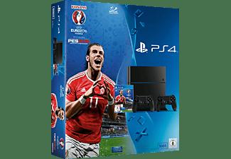 SONY PlayStation 4 Konsole CUH-1216A 500GB Schwarz inkl. UEFA Euro 2016 und 2 Controllern