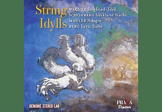 George Sebastian, Gewandhausorchester Leipzig, Columbia Symphony Orchestra, Walter Bruno, Craft Robert - String Idylls  - (CD)