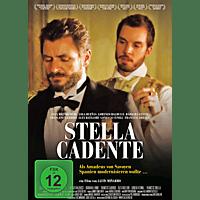 Stella Cadente [DVD]