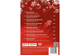VARIOUS - Christmas Party Karaoke  - (DVD)