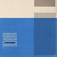Preoccupations - Preoccupations [Vinyl]