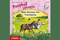 Mira Linzenmeier, Lena Langenbacher, Fenja Luisa Kühn - Ponyhof Liliengrün Mein Sommer mit Traumpony (Box) - (CD)