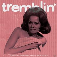 VARIOUS - Tremblin'-Steamy & Atmospheric Fe - [Vinyl]