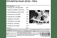 Ieuan Jones - Kammermusik für Harfe [CD]