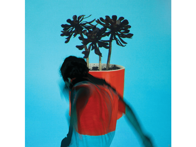 Local Natives - Sunlit Youth [Vinyl]