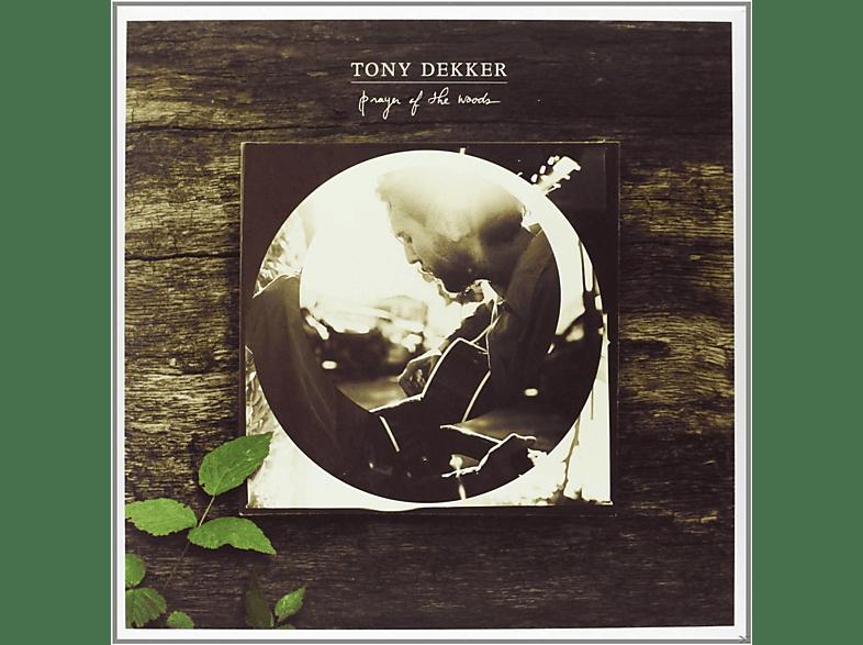 Tony Dekker - Prayer Of The Woods (Inkl.Mp3-Code) [Vinyl]