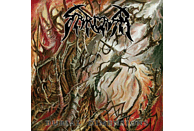 Sarcasm - Burial Dimensions (Black Vinyl) [Vinyl]