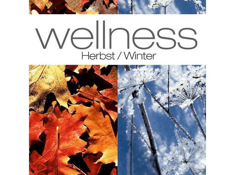 VARIOUS - Wellness: Herbst-Winter [CD]
