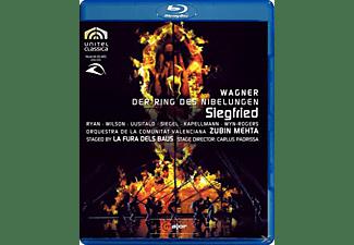 UUSITALO, RYAN, SIEGEL, KAPELLMANN, MEHTA/RYAN/WILSON/SIEGEL - Siegfried  - (Blu-ray)