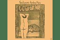 Needlepoint - Aimless Mary [Vinyl]