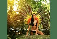 Be Ignacio - Tropical Soul [CD]