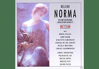 Coro E Orch.Palacio De Las Bel - Norma  - (CD)