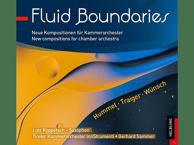 Lutz Koppetsch, Tiroler Kammerorchester Innstrumenti - Fluid Boundaries [CD]