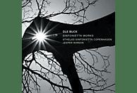 Athelas Sinfonietta Copenhagen, Jesper  Nordin - Sinfonietta Works [CD]