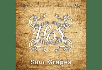 House Of Shakira - Sour Grapes  - (CD)
