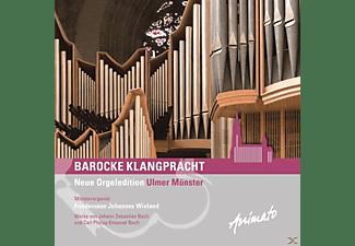 Friedemann Johannes Wieland - Barocke Klangpracht  - (CD)