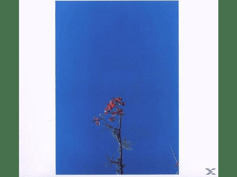 Joanna Newsom - JOANNA NEWSOM & YS STREET B./EP [EP (analog)]