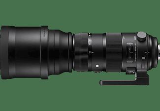 SIGMA ZA 955 Sports + TC 1401 150 mm - 600 mm f/5-6.3 (Objektiv für Nikon F-Mount, Schwarz)