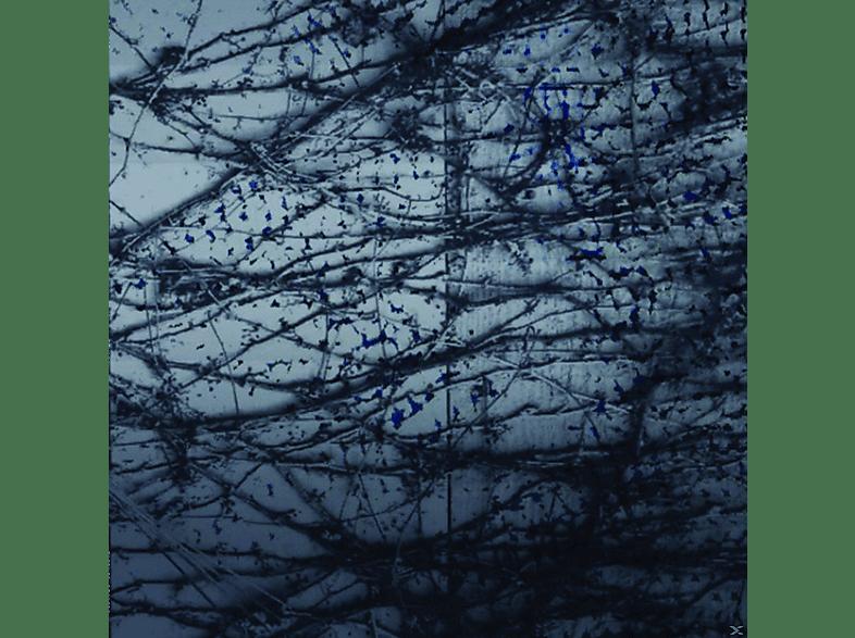 Human Rays - A Tension [Vinyl]