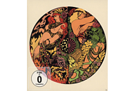 Blues Pills - Lady In Gold [CD + DVD Video]