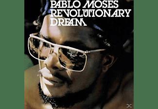 Pablo Moses - Revolutionary Dream  - (Vinyl)