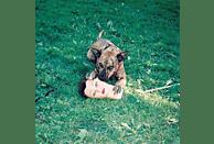 Joyce Manor - Cody [CD]