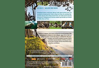 Wildes Baltikum: Die Küste / Wälder und Moore DVD