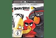 Angry Birds - Der Film [4K Ultra HD Blu-ray + Blu-ray]