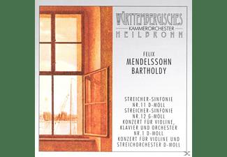 Württembergisches Kammerorchester (heilbronn) - Konzerte & Sinfonien  - (CD)