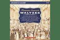 Munich Symphony Orchestra, Philharmonic Orchestra Kosice, Ljubljana Radio Symphony Orchestra, Radio Bratislava Symphony - Famous Concert Waltzes [CD]