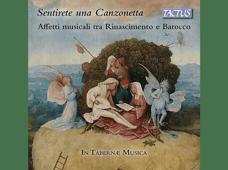 In Tabernae Musica - Sentirete una canzonetta [CD]