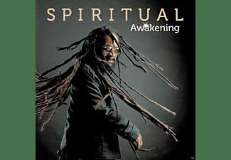 Spiritual - Awakening  - (Vinyl)
