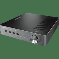 YAMAHA WXC-50 Streaming Player (, Silber)