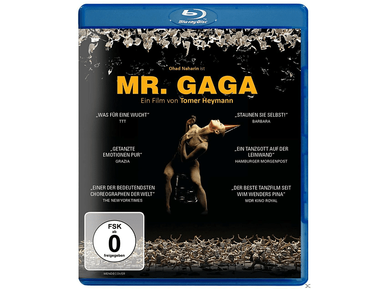 Mr. GAGA [Blu-ray]