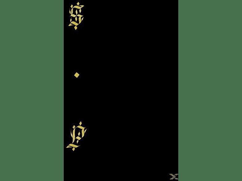 Shabazz Palaces - Black Up [Vinyl]