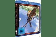 Maria, the Virgin Witch – Box 1 – Limited Edition mit Manga [Blu-ray]