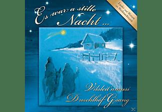 Duschlhof Gsang, VARIOUS, Vilsleit'nmusi - Adventslieder und Musik  - (CD)