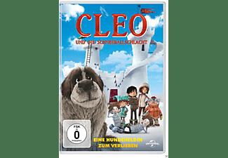 Cleo und die Schneeballschlacht DVD