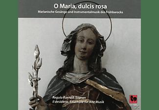 Ildiko Sajgo, Juan Sebastian Lima, Regula Konrad, Hans-Jakob Bollinger, VARIOUS, Ensemble Für Alte Musik - O Maria, Dulcis Rosa  - (CD)